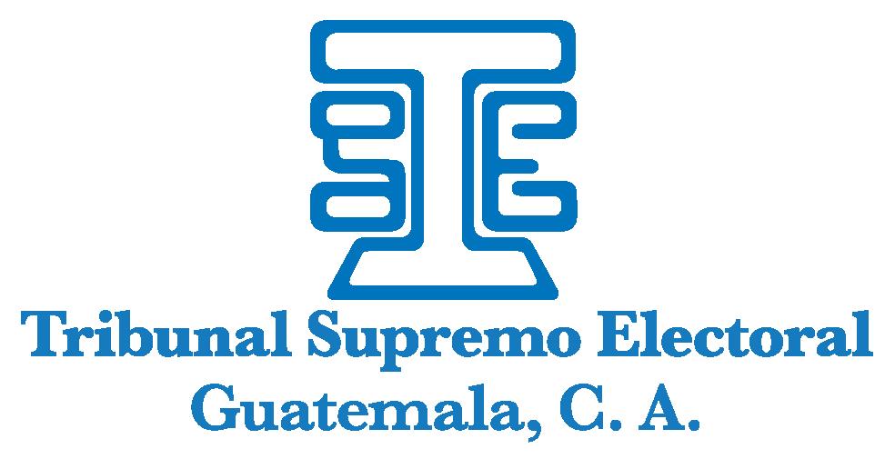 Logo Tribunal Supremo Electoral